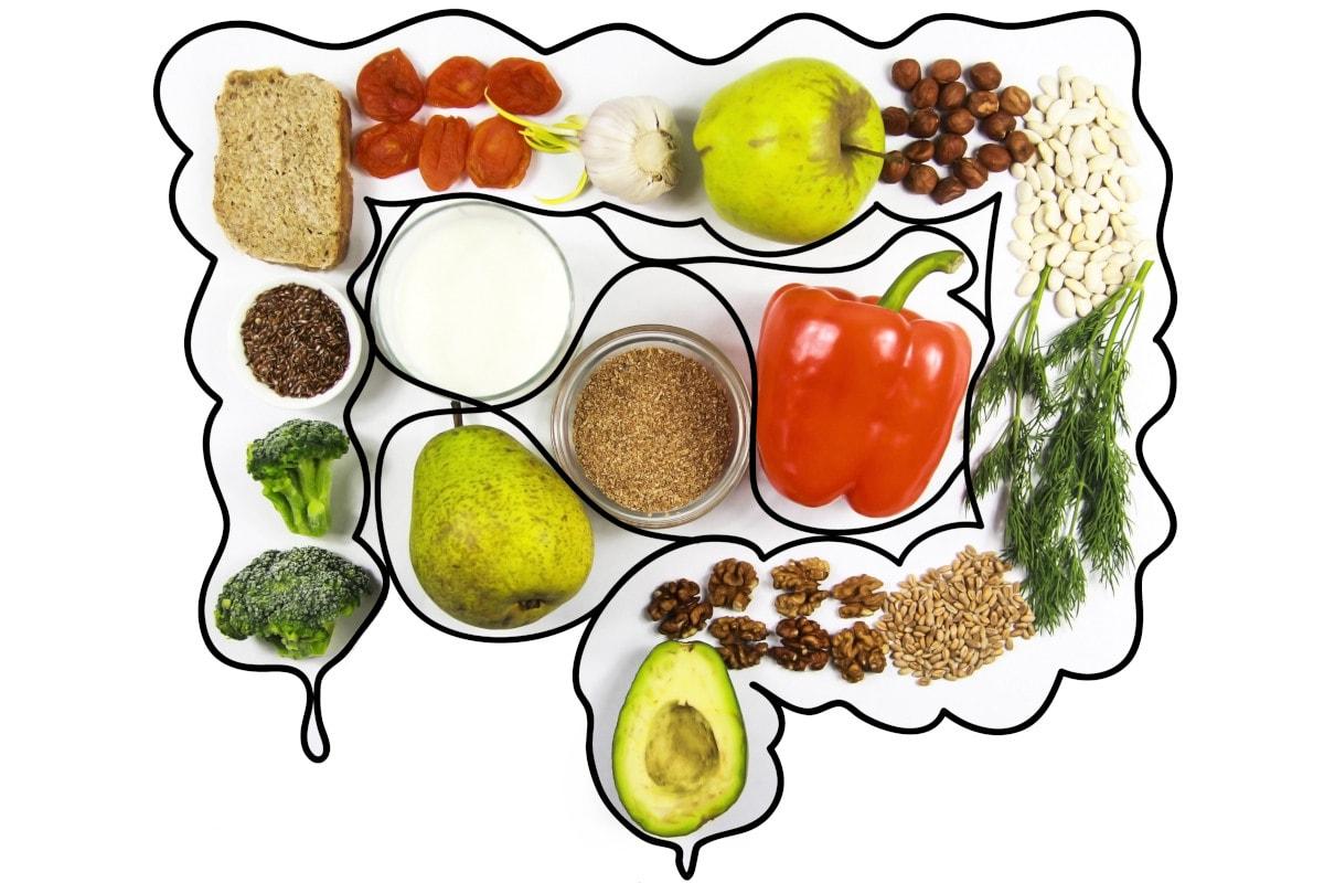 Fruits Veggie Digestive System